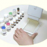 HTLV-I/II p19 Antigen ELISA Kit