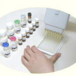 In vitro antimalaria efficacy assay kit