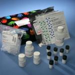 vWF-Actibind ELISA Kit