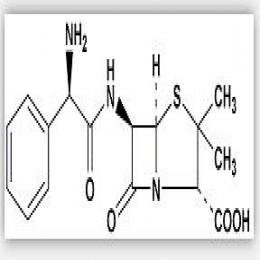 Ampicillin anhydrous