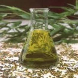Buy Sassafras oil(Safrole Oil) online-CAS 8006-80-2